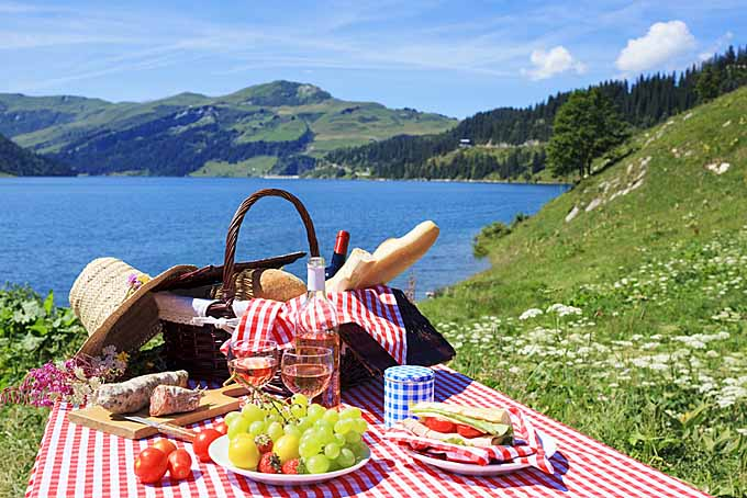 HD Quality Wallpaper   Collection: Food, 680x454 Picnic
