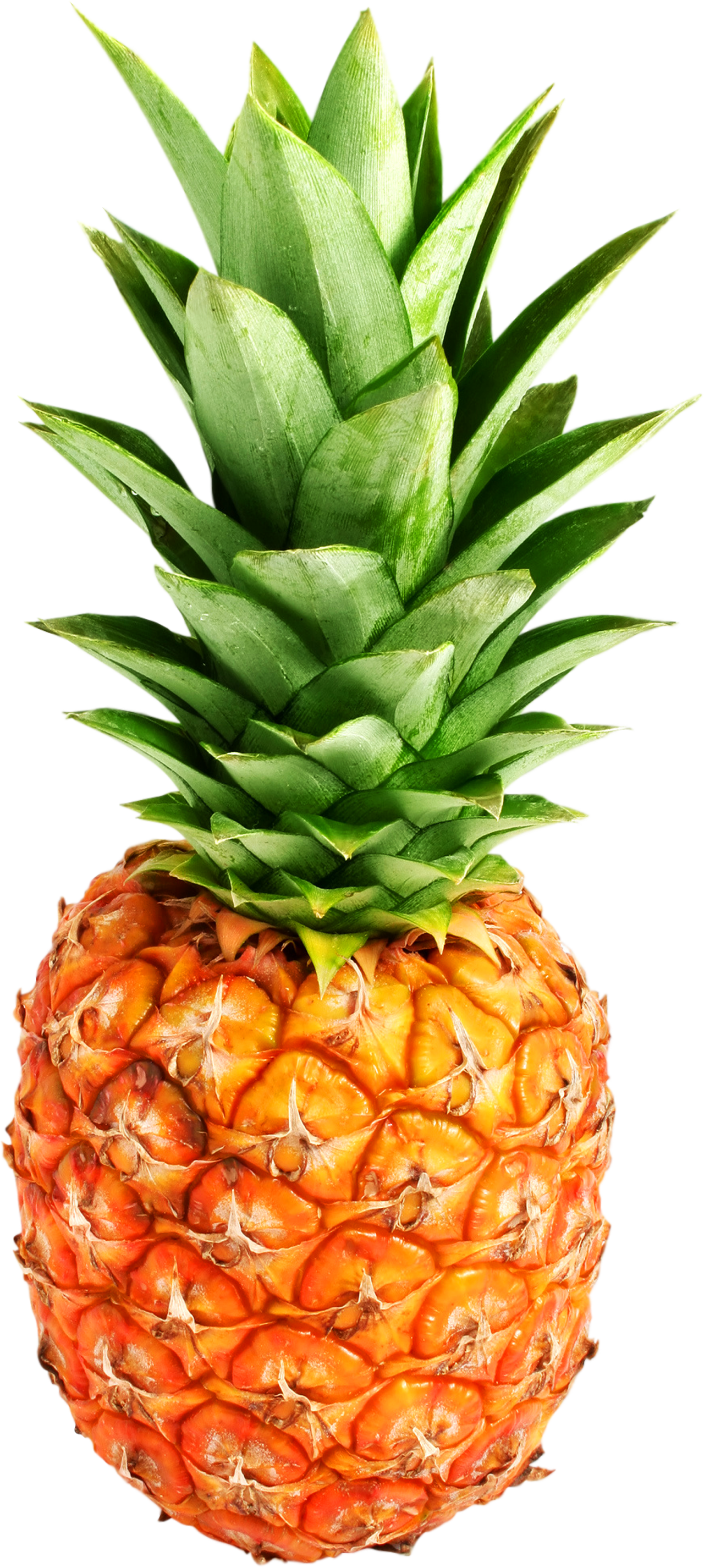 1280x2851 > Pineapple Wallpapers