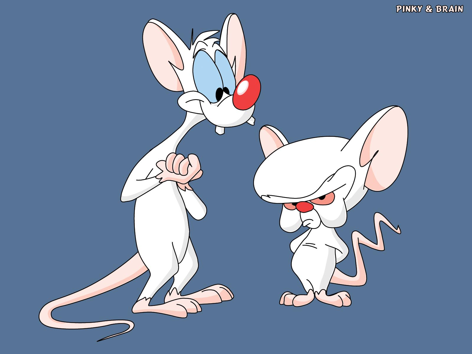 HD Quality Wallpaper | Collection: Cartoon, 1600x1200 Pinky And The Brain