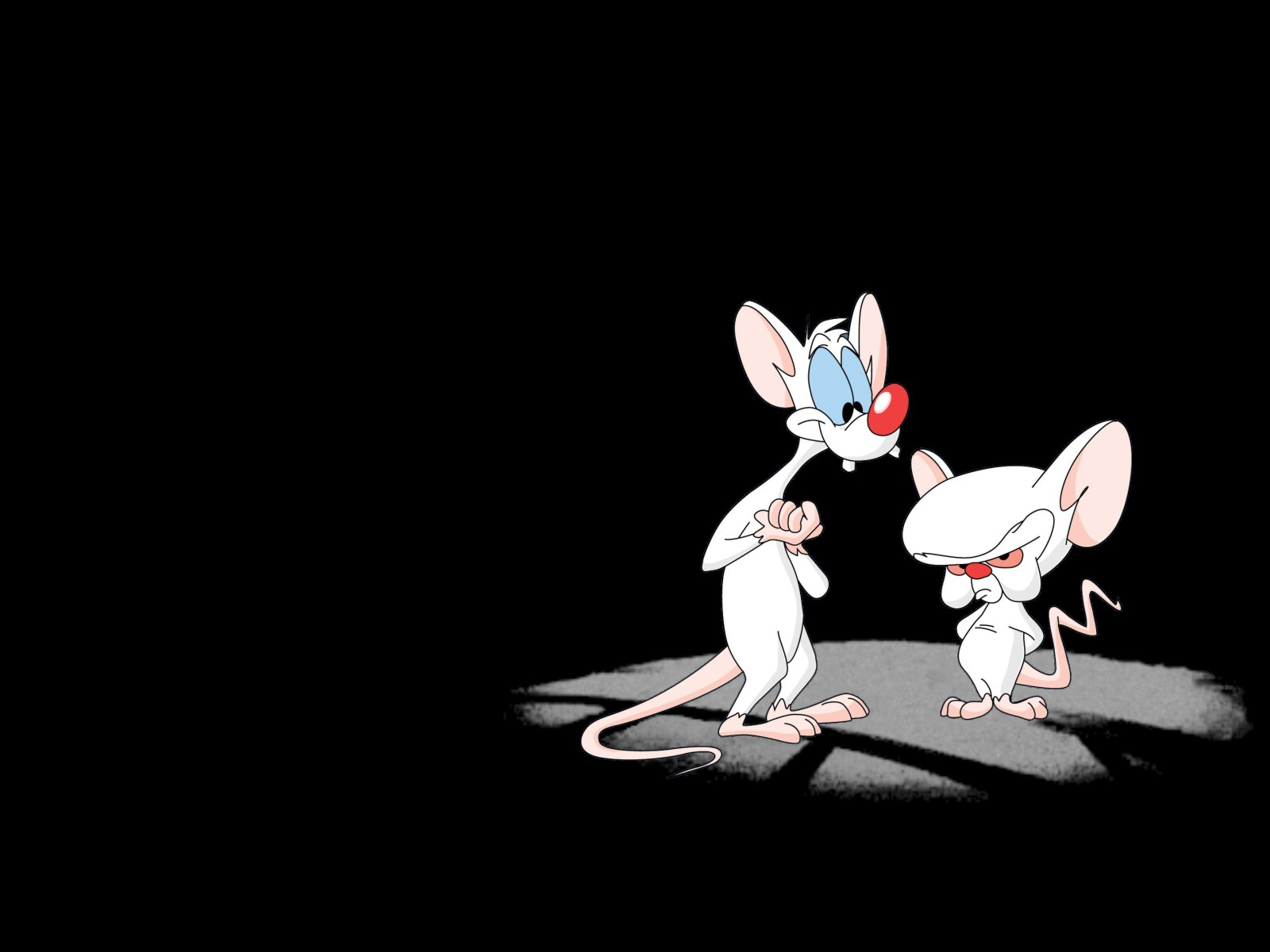 1600x1200 > Pinky And The Brain Wallpapers