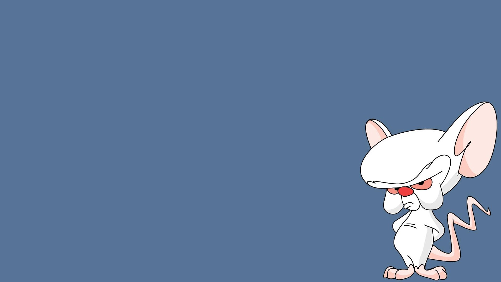 Nice Images Collection: Pinky And The Brain Desktop Wallpapers