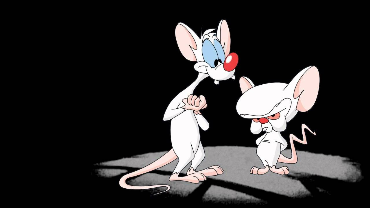 Images of Pinky And The Brain | 1280x720