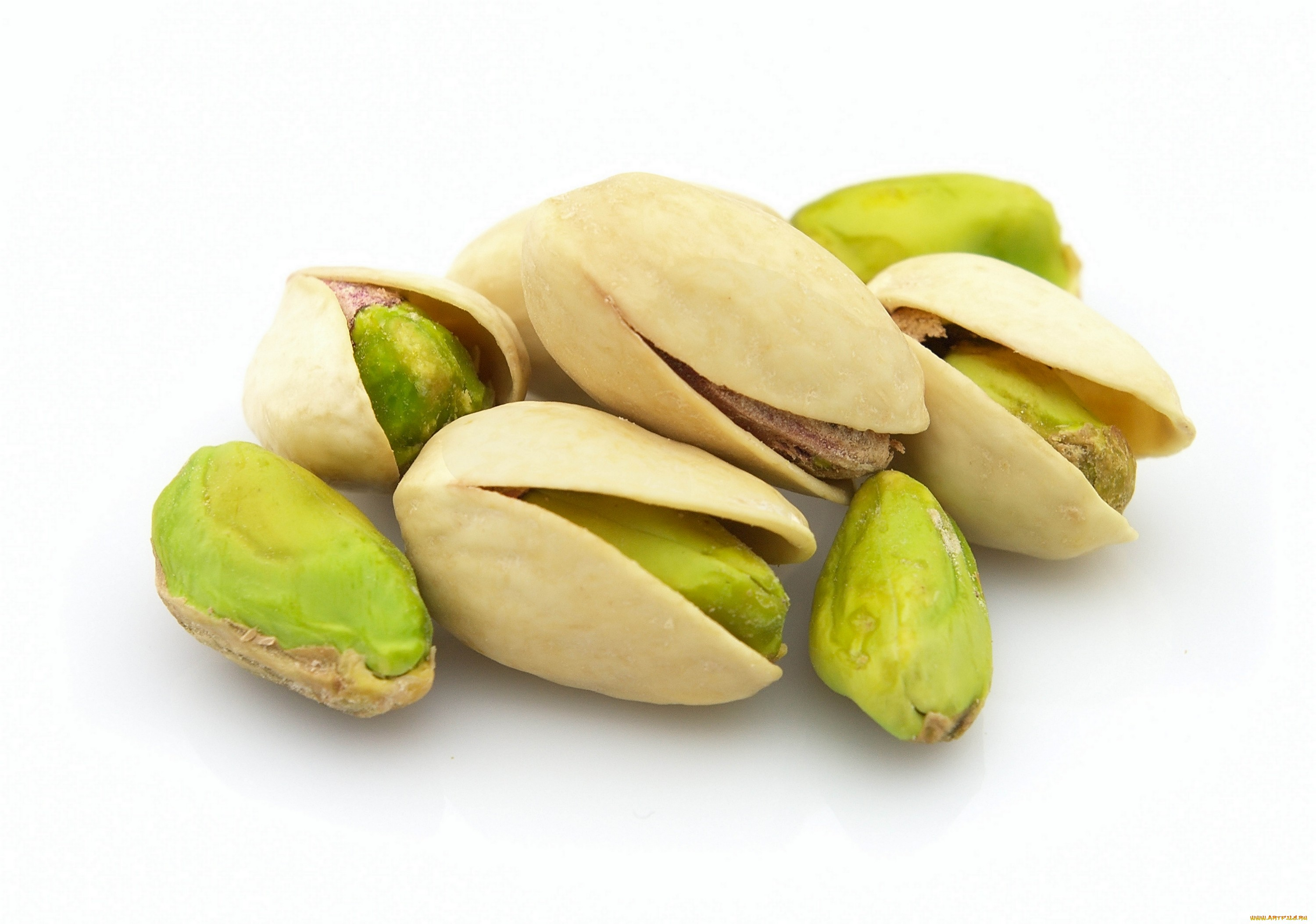 Pistachio High Quality Background on Wallpapers Vista