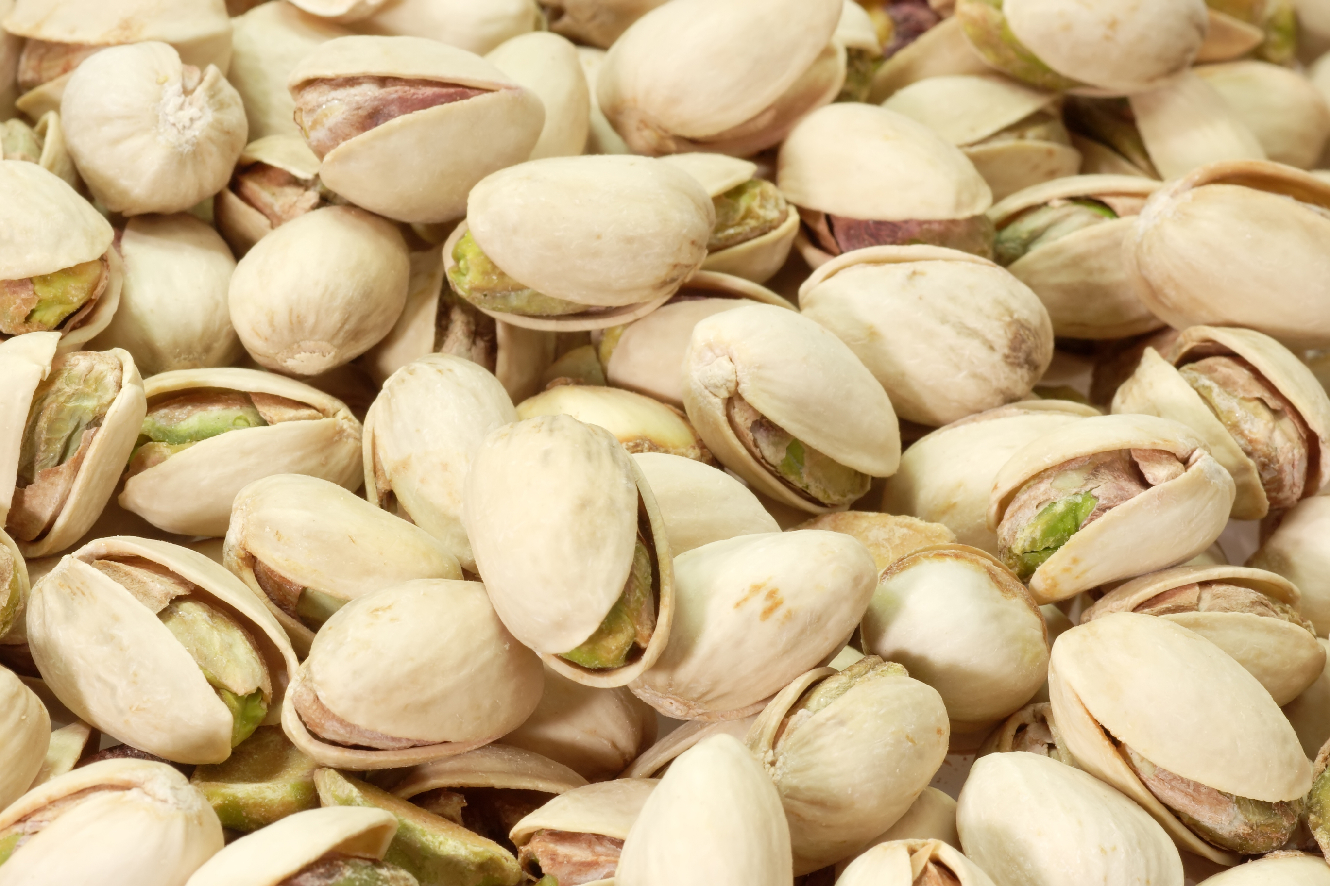 Nice Images Collection: Pistachio Desktop Wallpapers