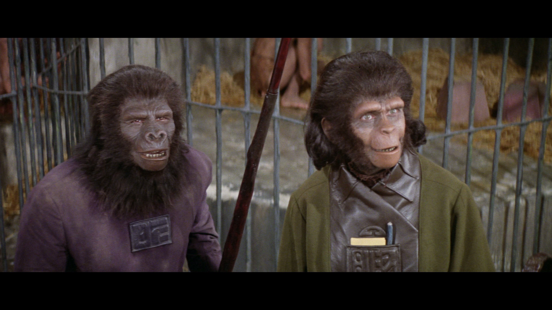 Planet Of The Apes Backgrounds, Compatible - PC, Mobile, Gadgets| 1920x1080 px