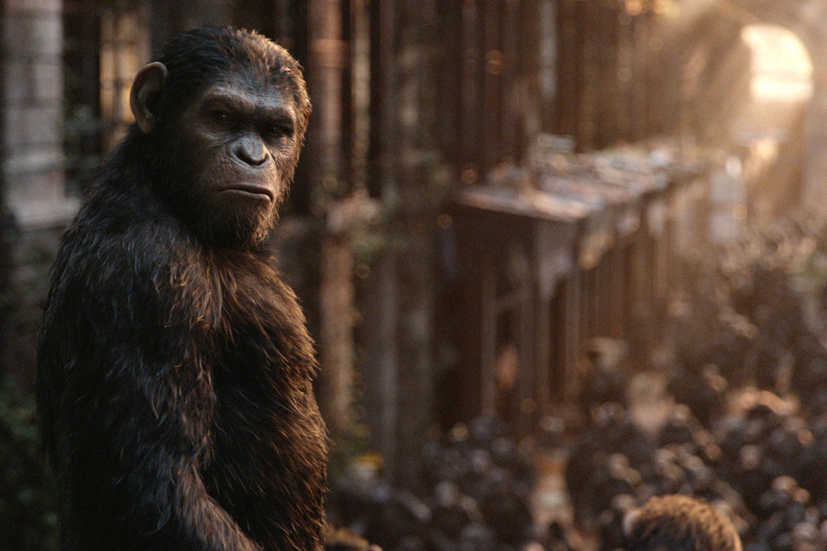 Images of Planet Of The Apes | 1200x800