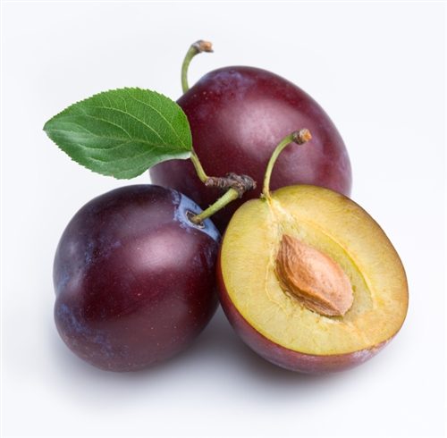 Plum Backgrounds, Compatible - PC, Mobile, Gadgets| 500x490 px