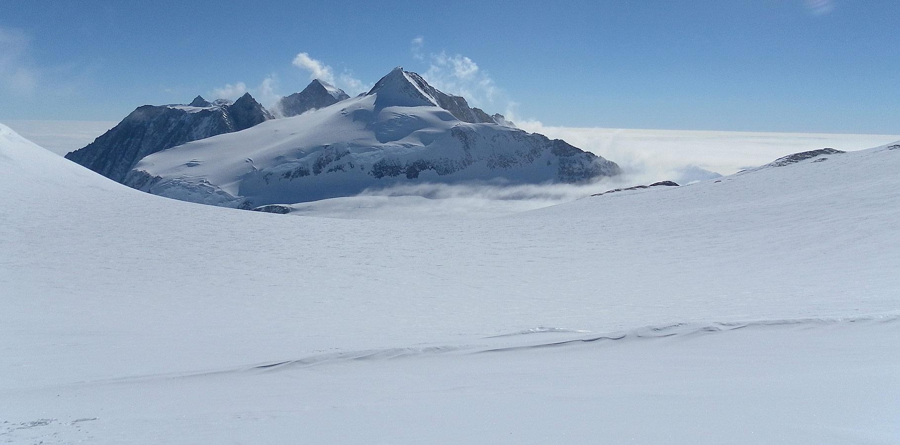 Polar Pics, Artistic Collection