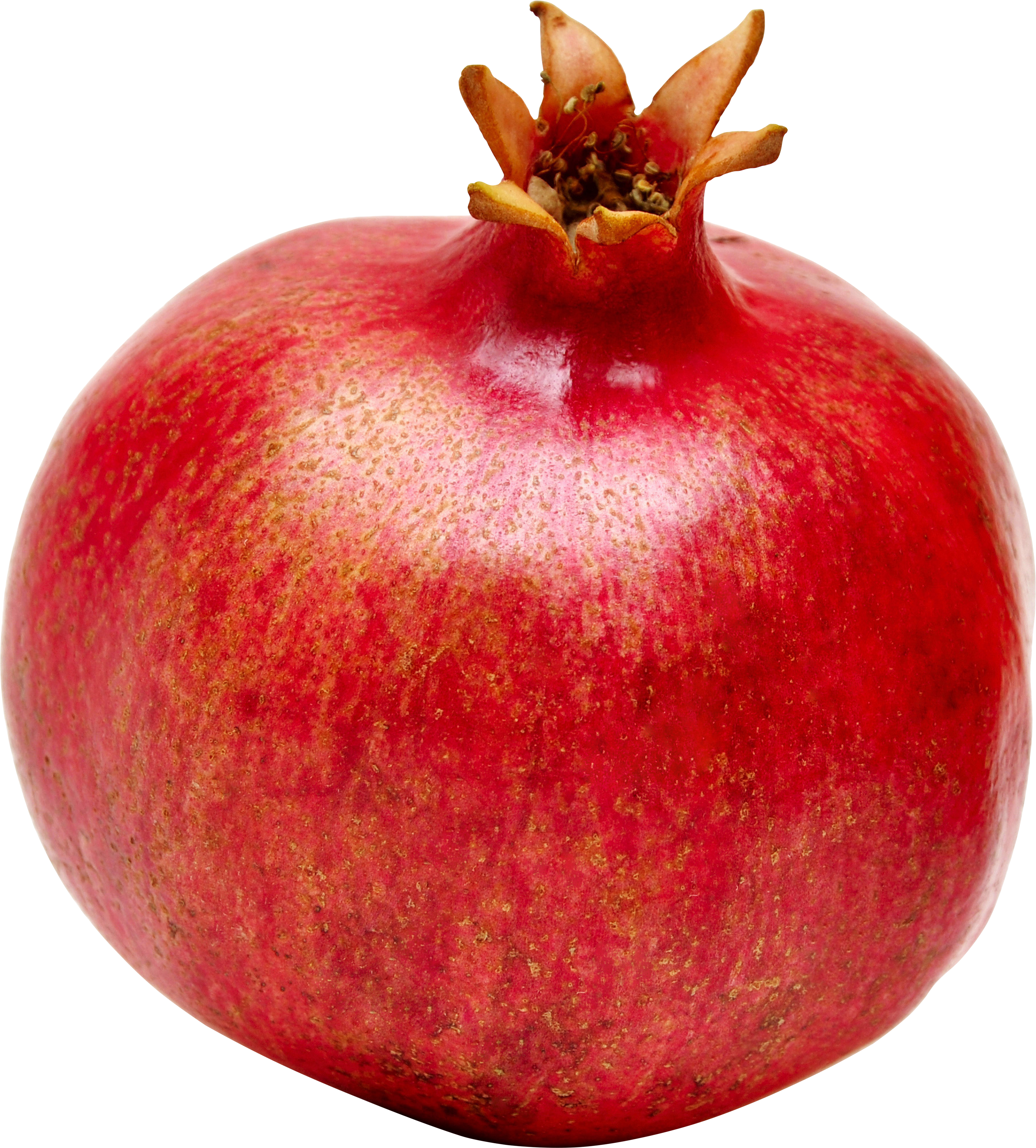 3158x3499 > Pomegranate Wallpapers