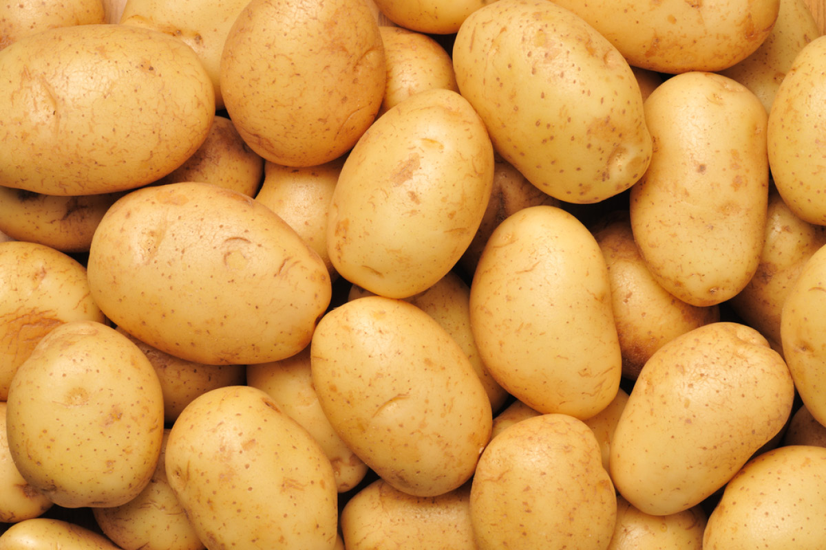 Potato High Quality Background on Wallpapers Vista