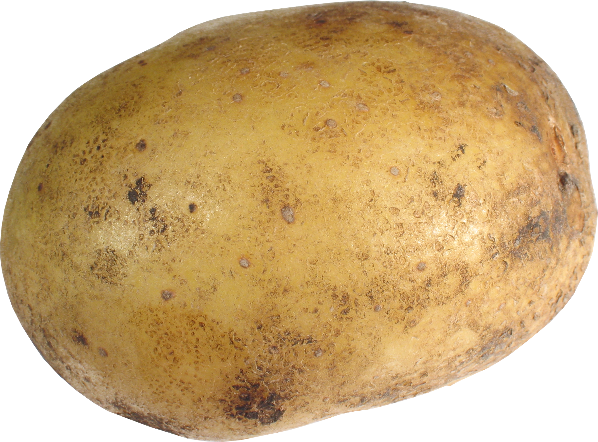 HD Quality Wallpaper | Collection: Food, 2360x1745 Potato