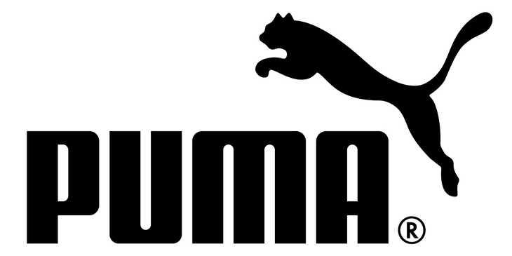 Puma Backgrounds, Compatible - PC, Mobile, Gadgets  730x365 px