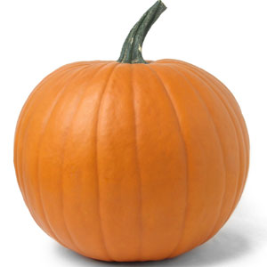300x300 > Pumpkin Wallpapers