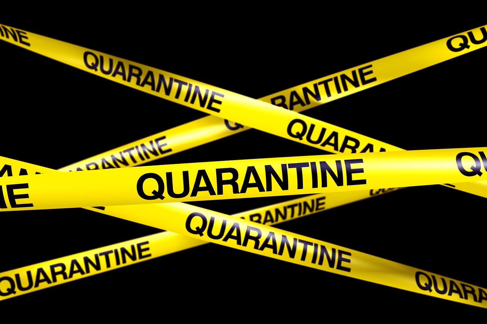 Quarantine Backgrounds, Compatible - PC, Mobile, Gadgets  1600x1067 px