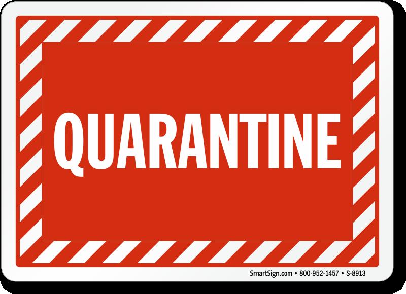Quarantine Backgrounds, Compatible - PC, Mobile, Gadgets  800x580 px