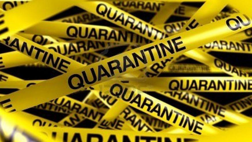 HD Quality Wallpaper   Collection: Movie, 876x493 Quarantine