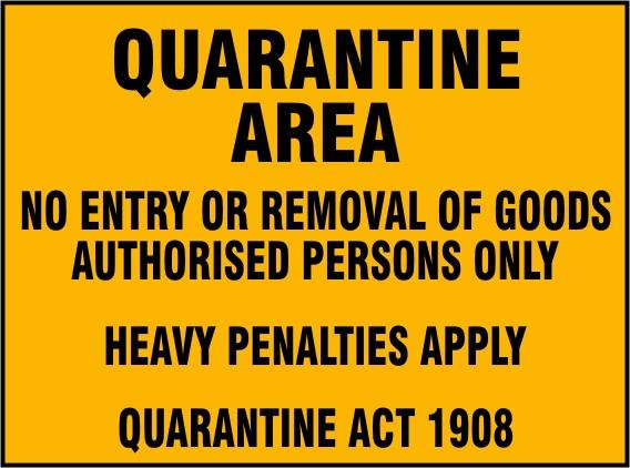 HD Quality Wallpaper   Collection: Movie, 568x422 Quarantine