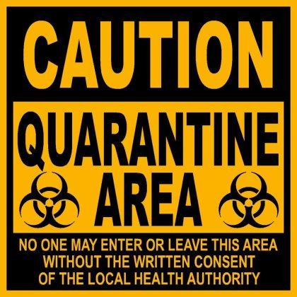 Nice wallpapers Quarantine 420x420px