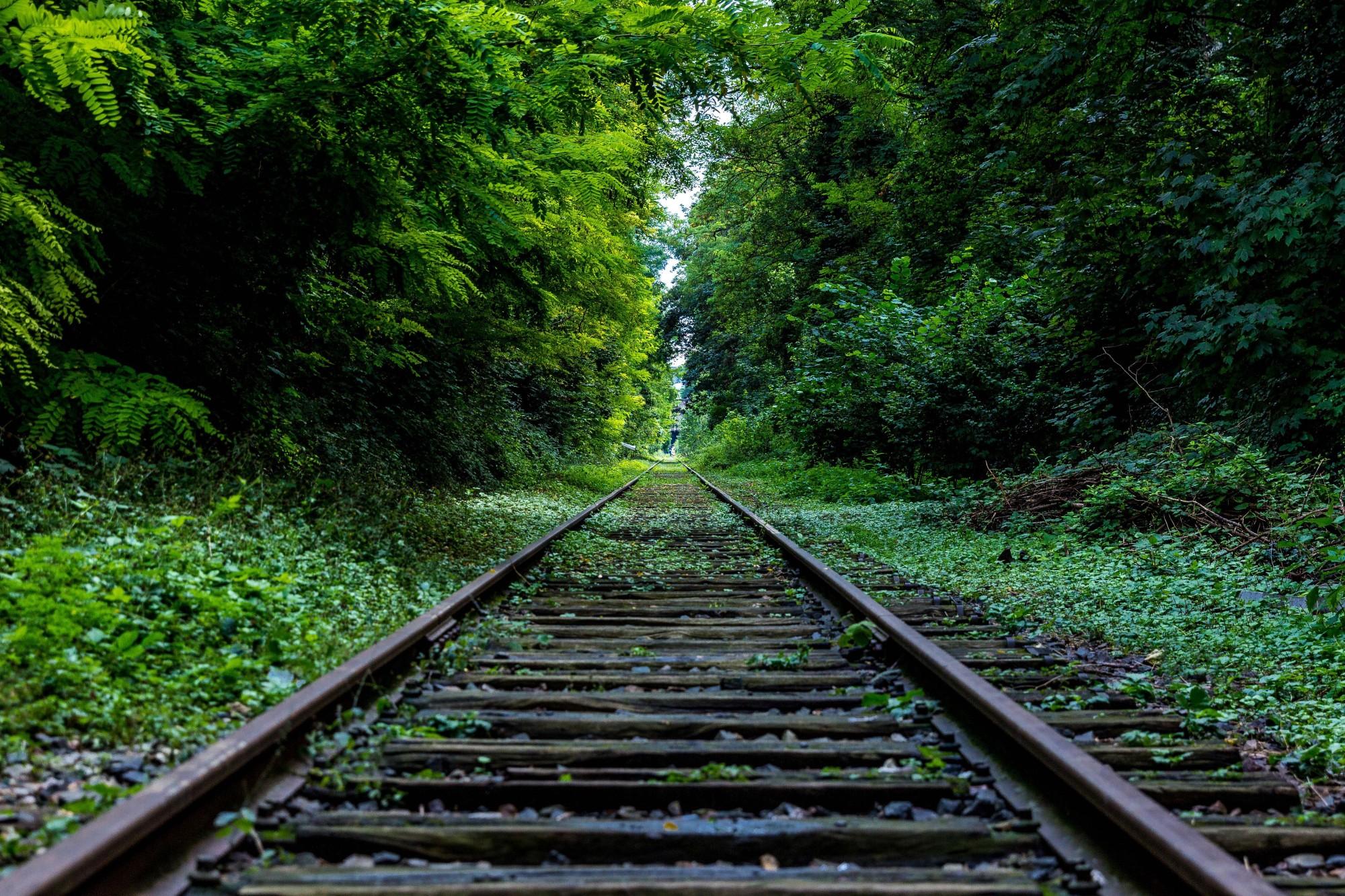 Railroad Pics, Artistic Collection