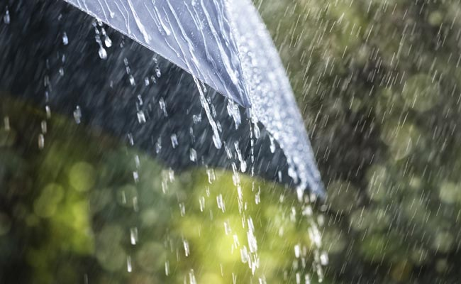 Rain Pics, Artistic Collection