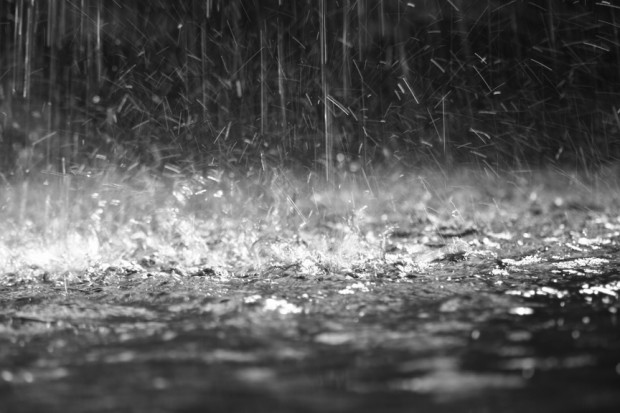 Amazing Rain Pictures & Backgrounds