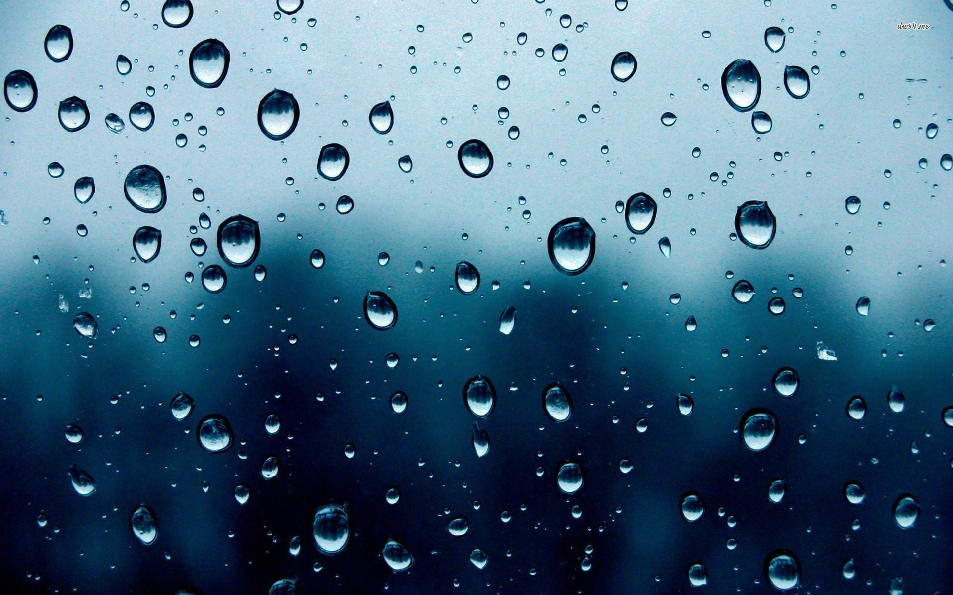 Amazing Raindrops Pictures & Backgrounds