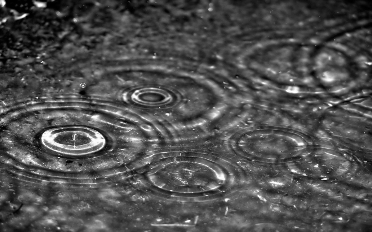 Raindrops Backgrounds on Wallpapers Vista