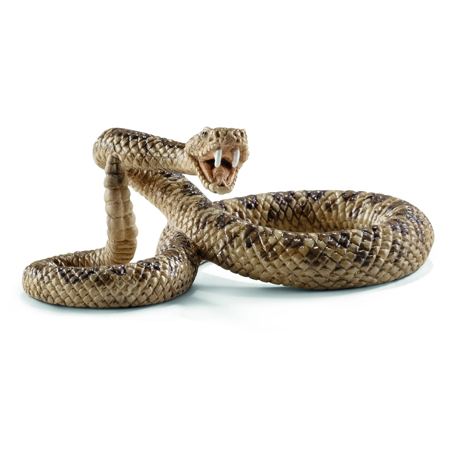Rattlesnake High Quality Background on Wallpapers Vista