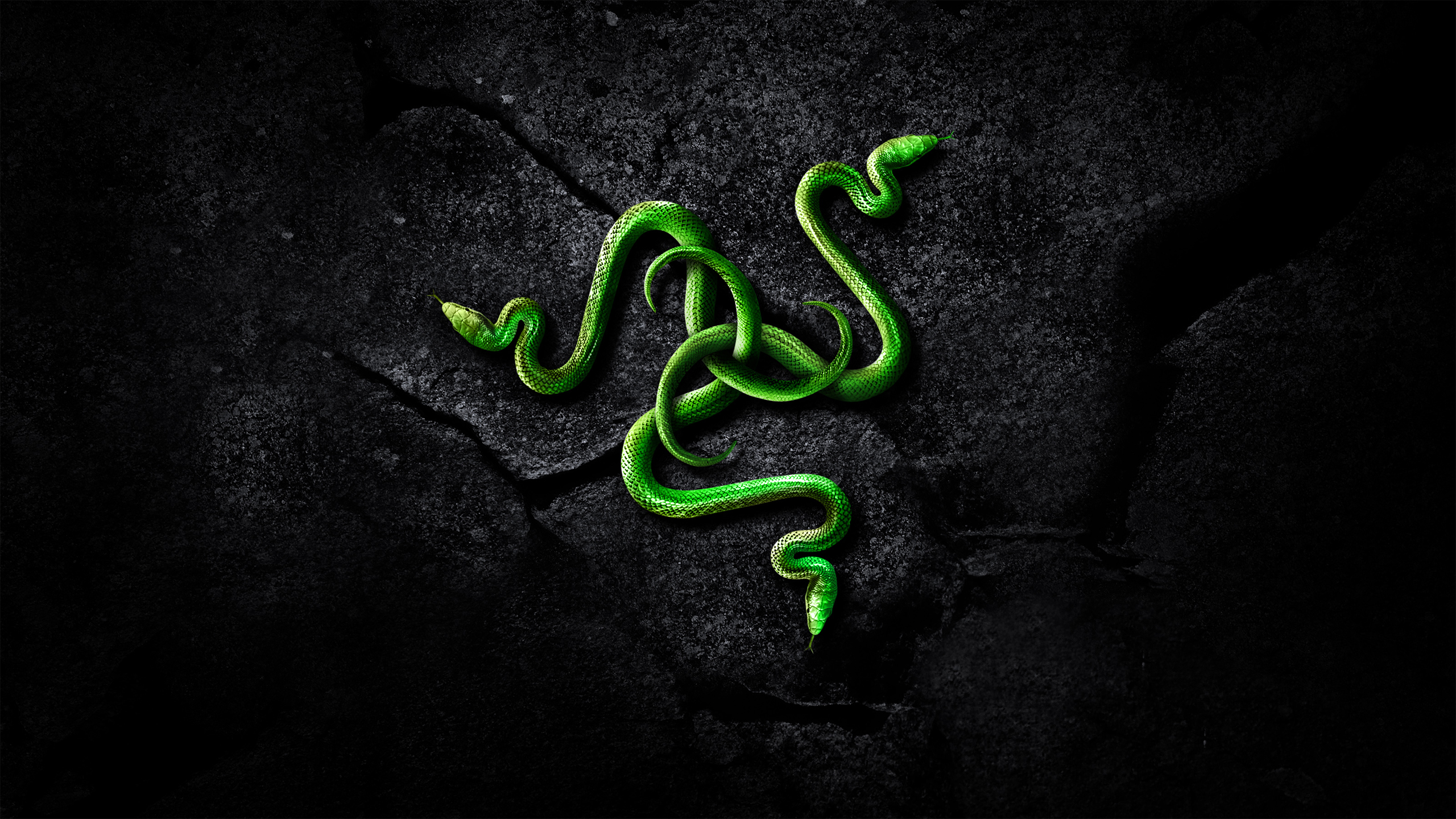 Razer Backgrounds on Wallpapers Vista
