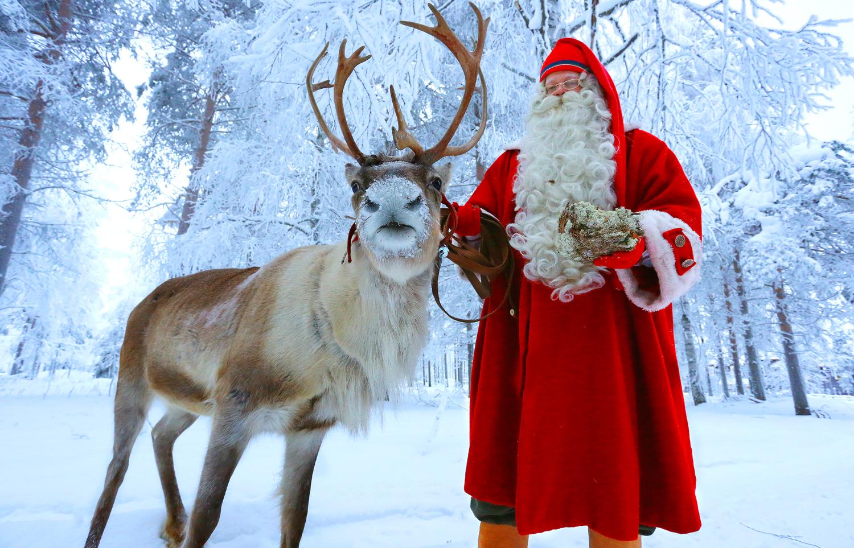 1500x963 > Reindeer Wallpapers