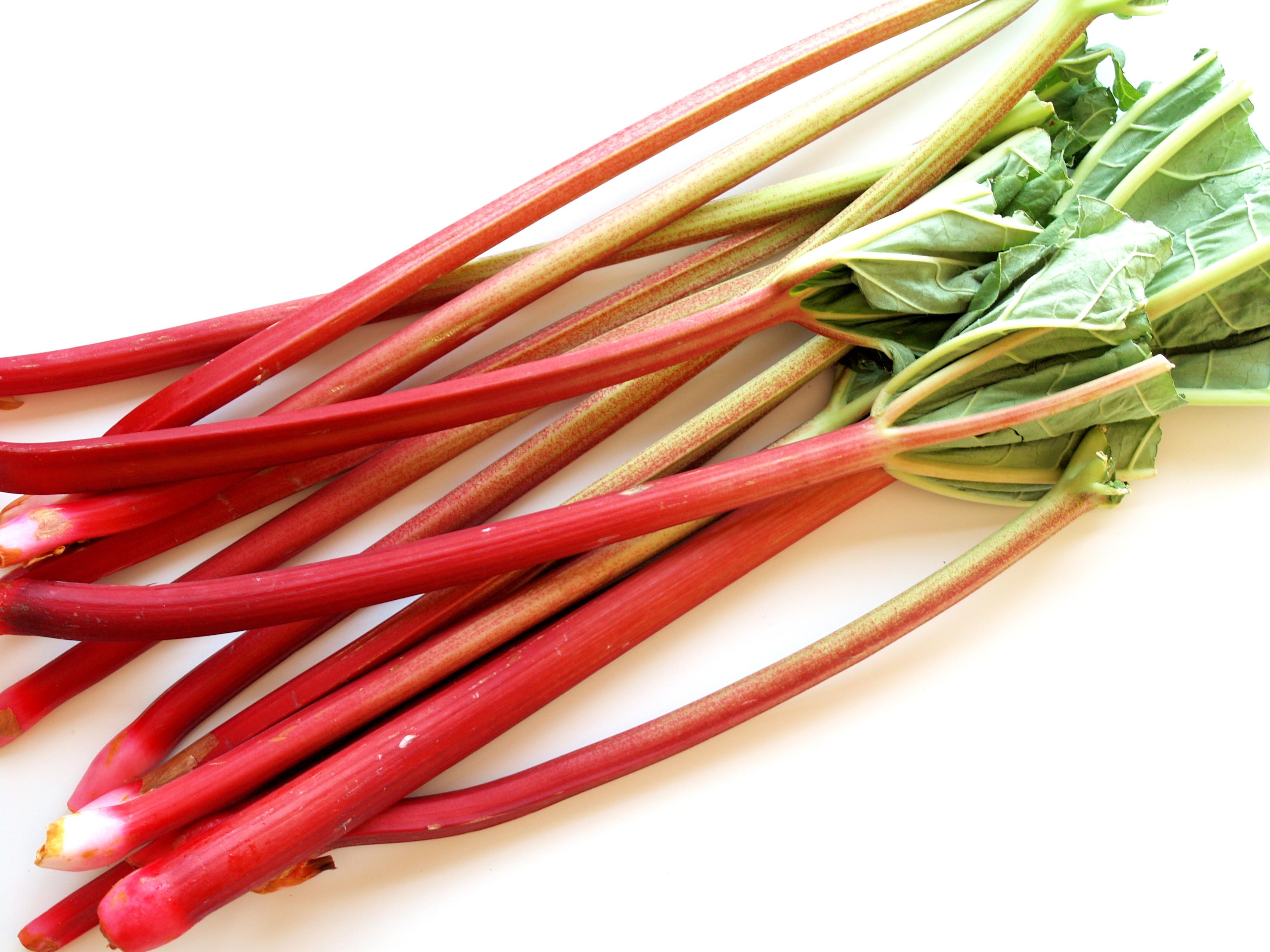 Rhubarb Pics, Food Collection