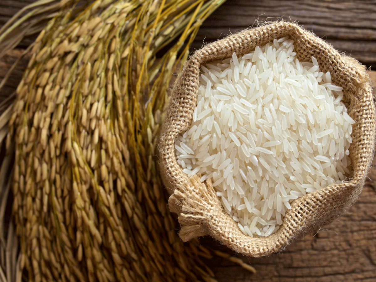 1200x900 > Rice Wallpapers