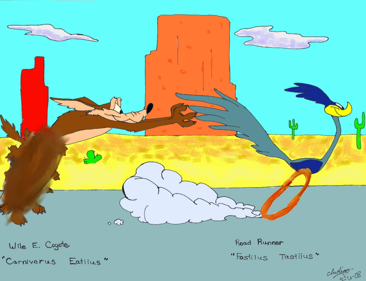 High Resolution Wallpaper | Wile E. Coyote And The Road Runner 1191x916 px