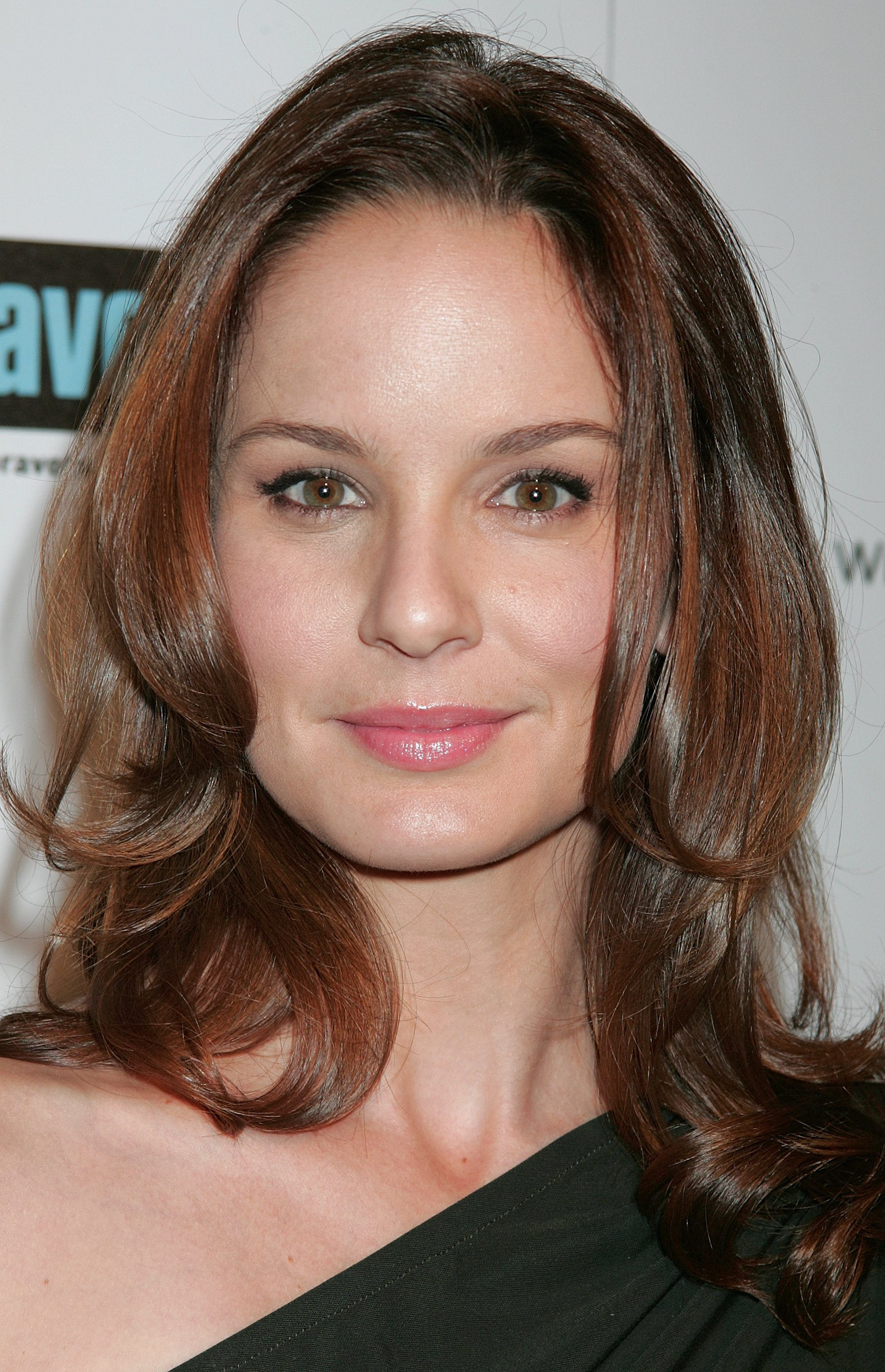 Nice Images Collection: Sarah Wayne Callies Desktop Wallpapers