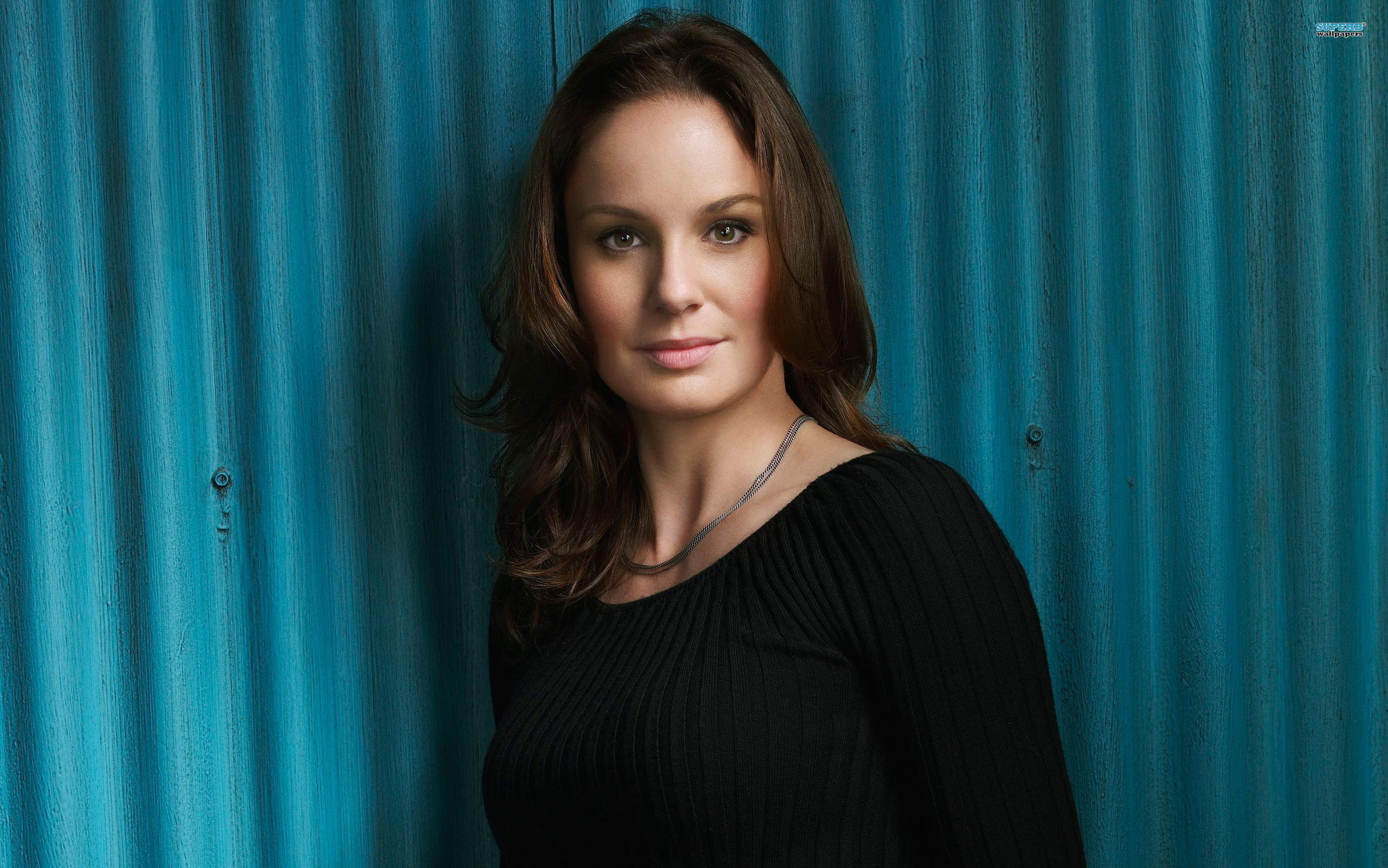 Sarah Wayne Callies Pics, Women Collection