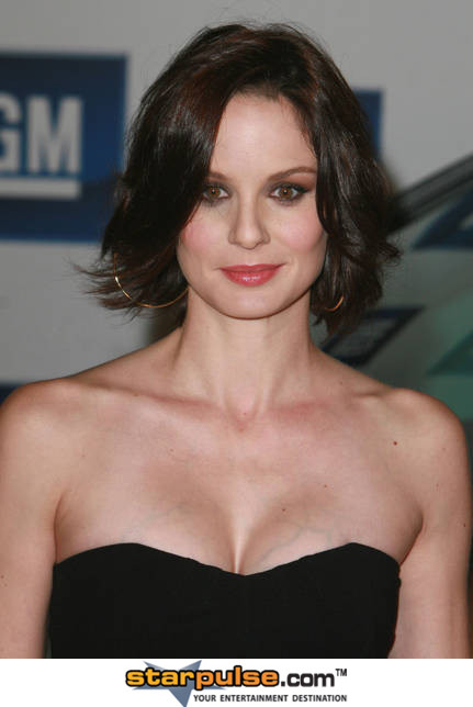 Nice wallpapers Sarah Wayne Callies 431x644px