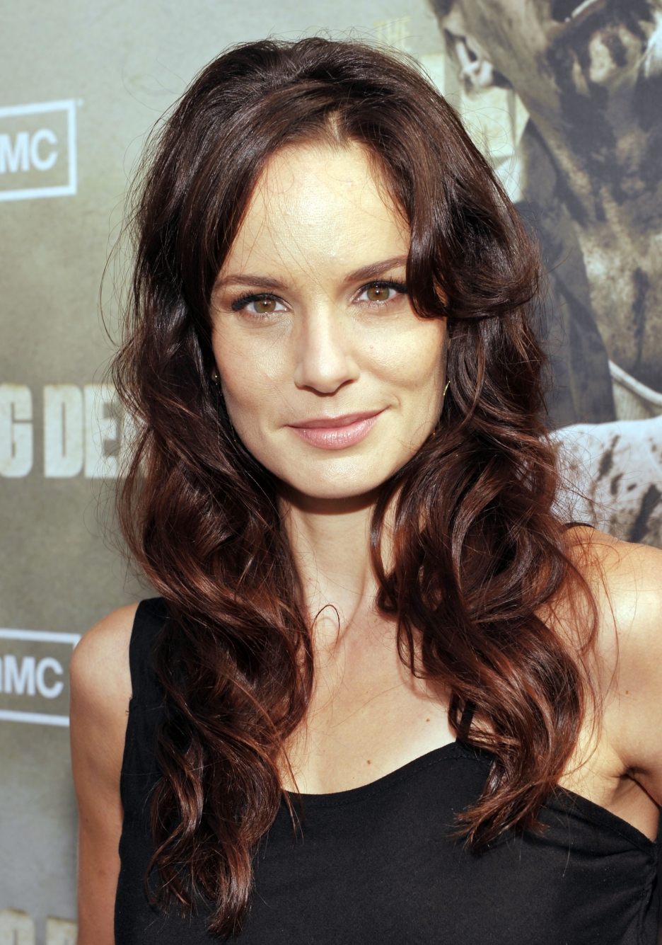 Sarah Wayne Callies High Quality Background on Wallpapers Vista