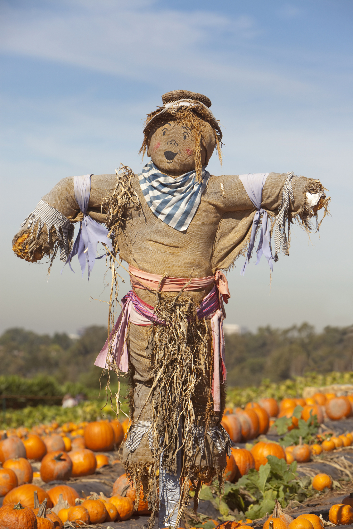 Nice wallpapers Scarecrow 1132x1696px