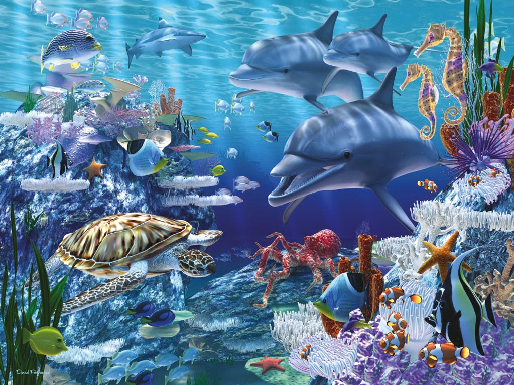 Sea Life Wallpapers Animal Hq Sea Life Pictures 4k Wallpapers 2019