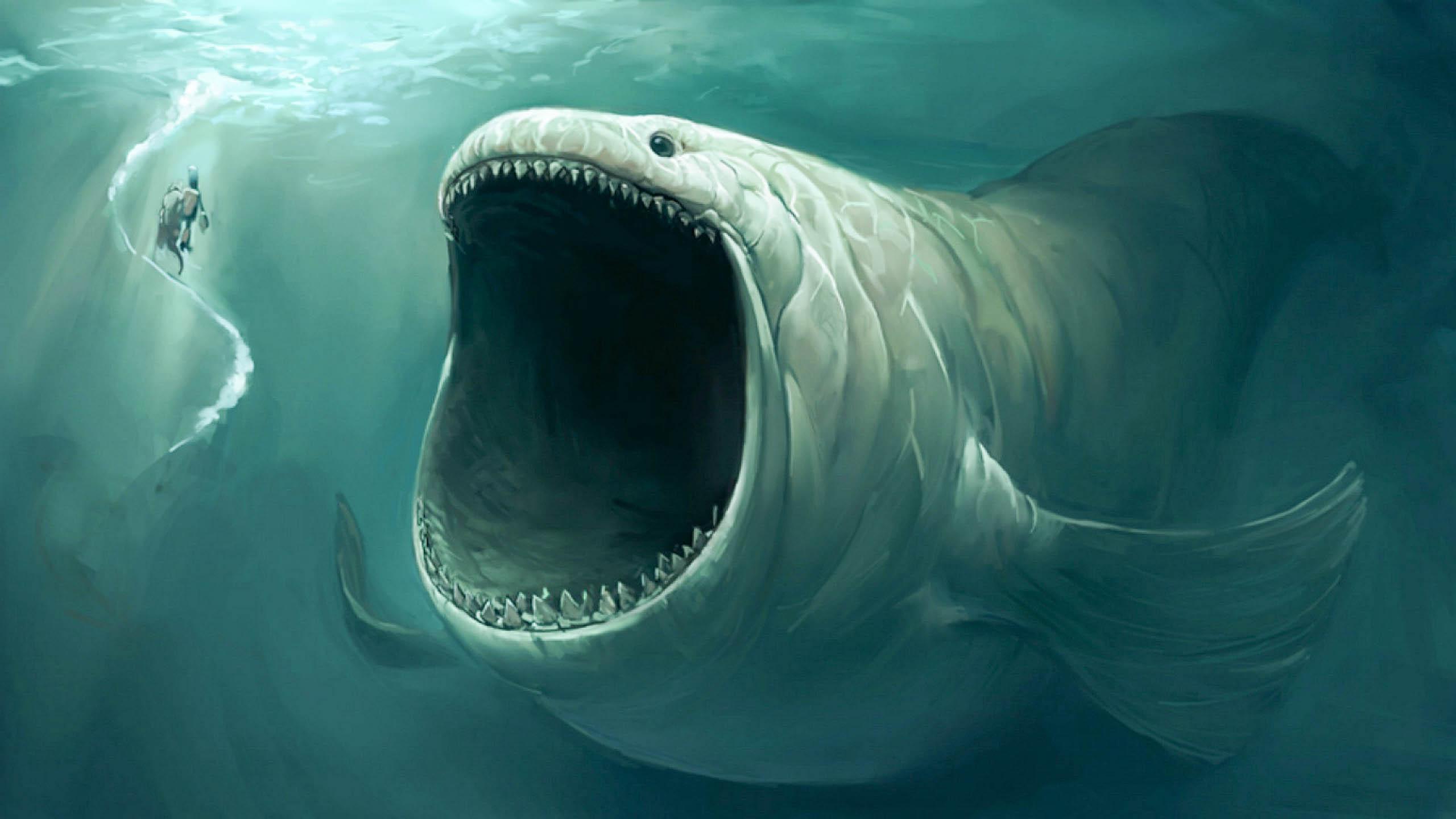 High Resolution Wallpaper | Sea Monster 2560x1440 px