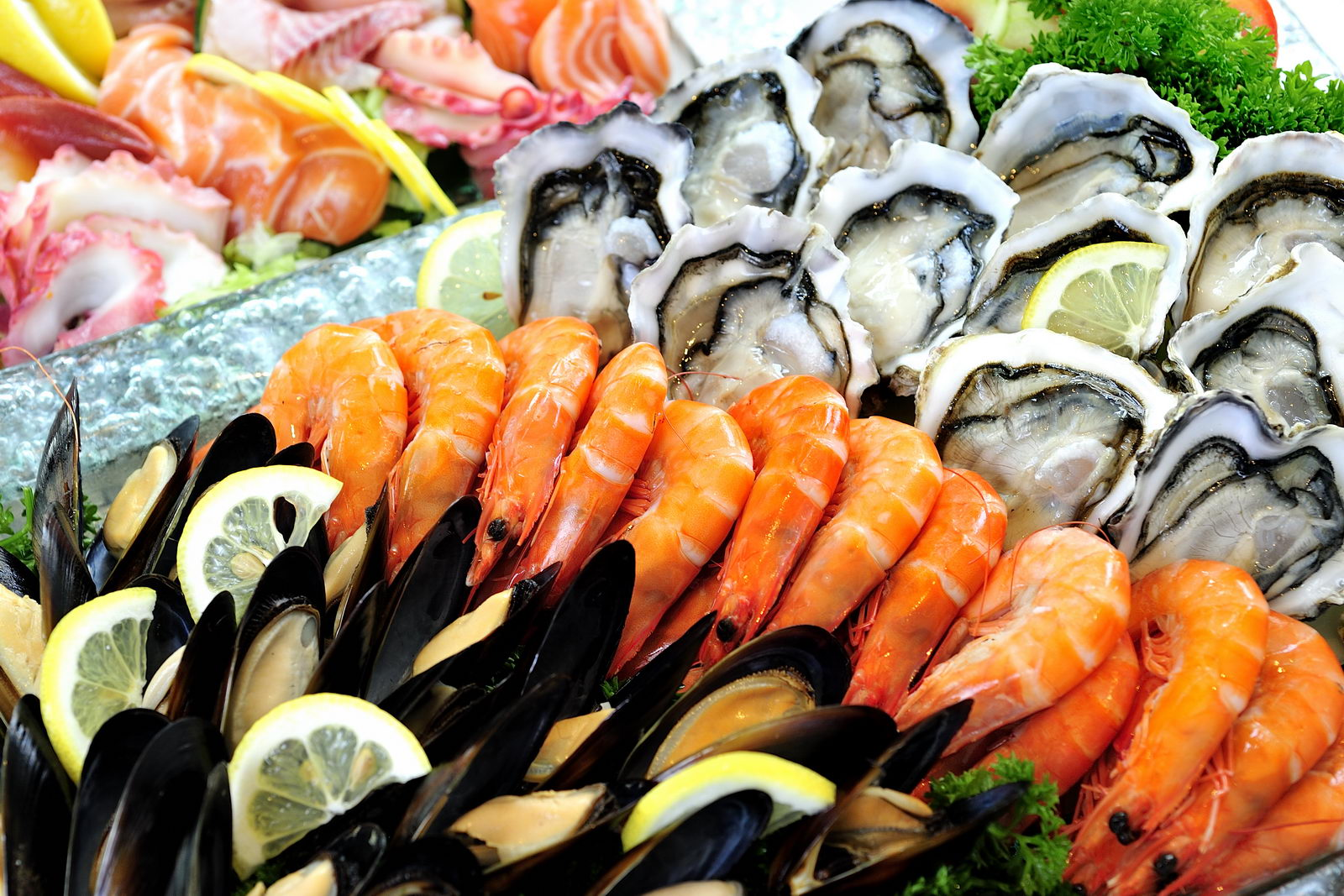 Images of Seafood   1600x1067