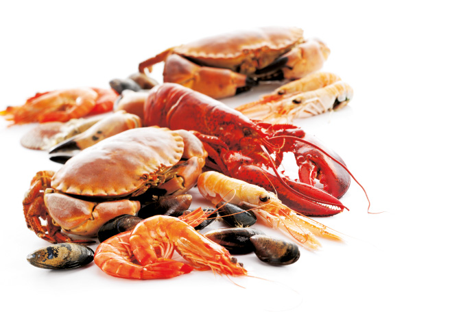 Amazing Seafood Pictures & Backgrounds
