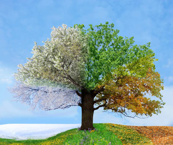 Nice Images Collection: Season Desktop Wallpapers