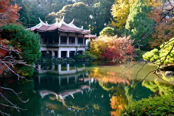 Shinjuku Gyoen Garden High Quality Background on Wallpapers Vista