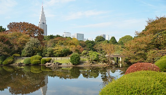 Images of Shinjuku Gyoen Garden | 575x330
