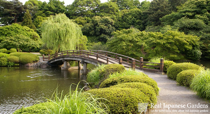 Shinjuku Gyoen Garden Backgrounds on Wallpapers Vista