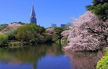 Nice wallpapers Shinjuku Gyoen Garden 220x142px