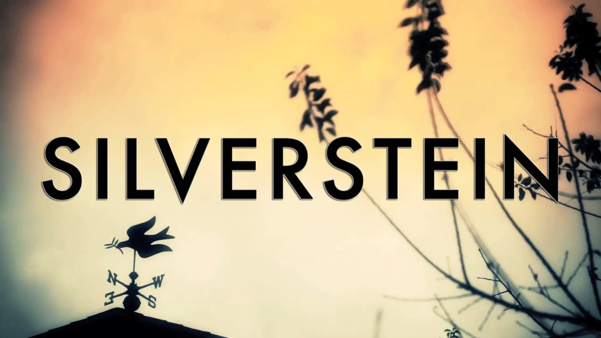 Silverstein Backgrounds, Compatible - PC, Mobile, Gadgets| 1920x1080 px