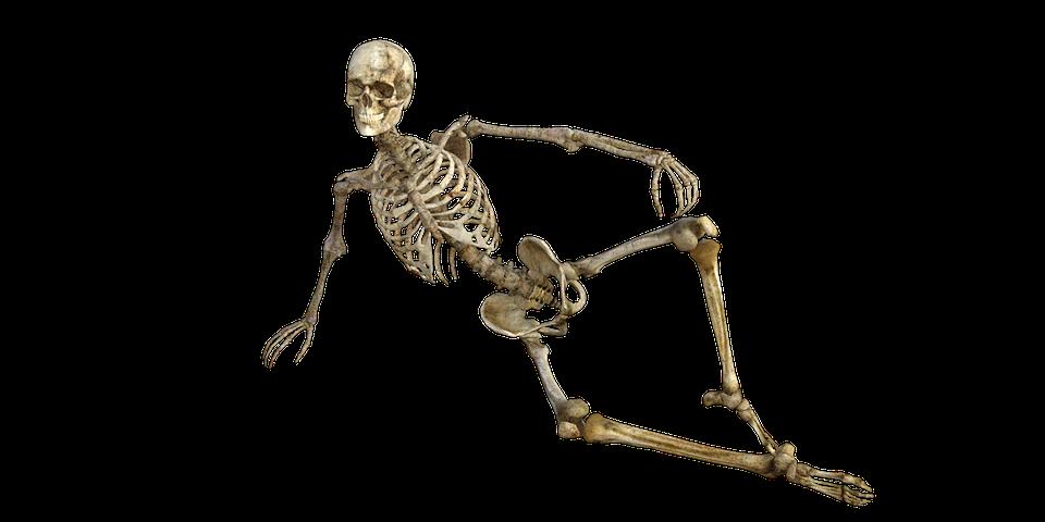 HQ Skeleton Wallpapers   File 159.38Kb