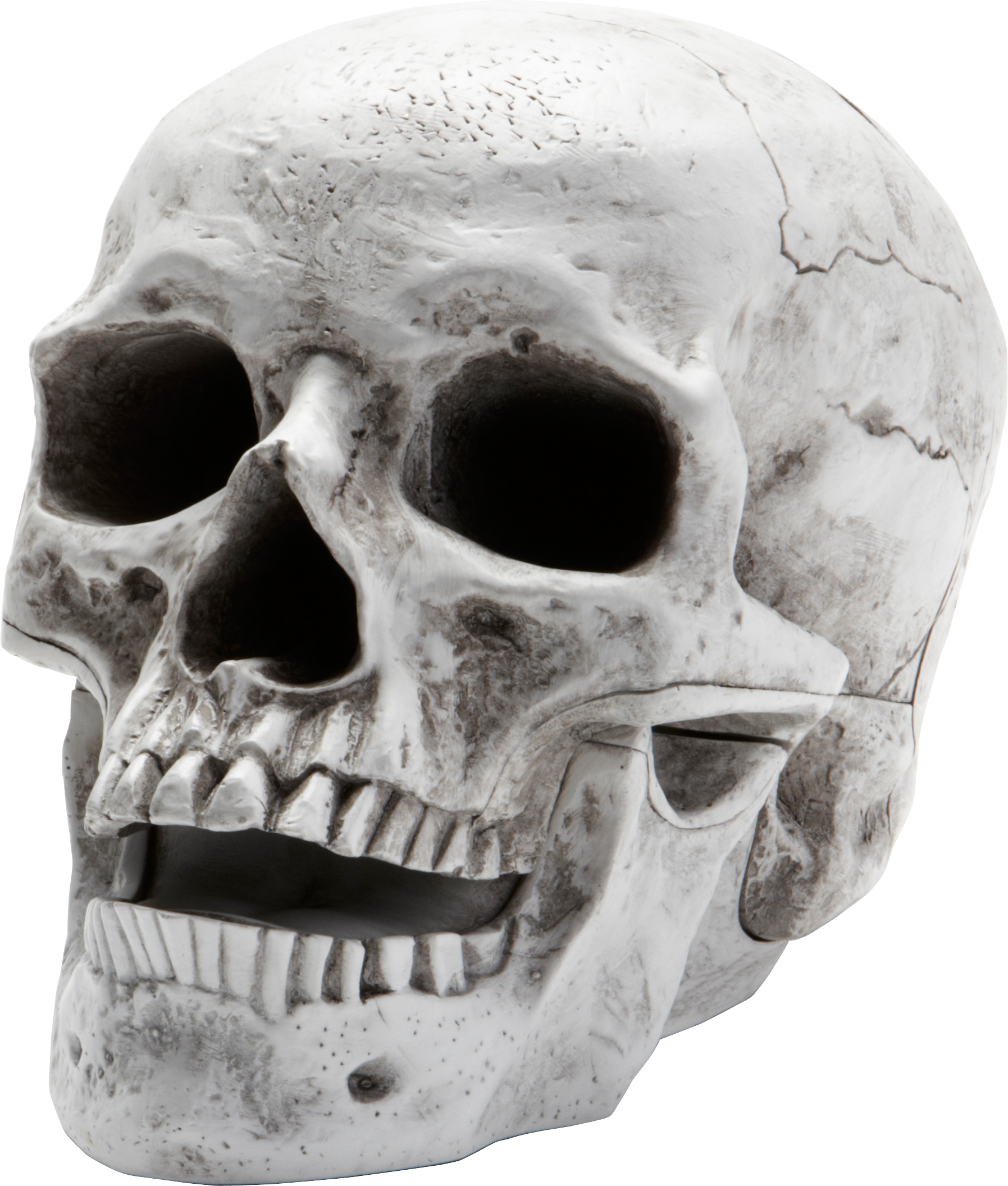 Nice wallpapers Skull 1795x2111px